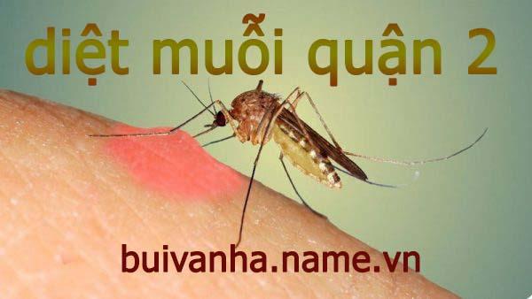 Công ty diệt muỗi tại quận 2